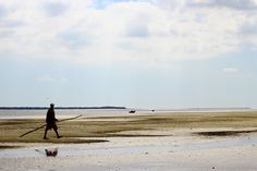 Inhaca Islands, Mozambique Maputo, Islands, My Photos, Beach, Water, Travel, Outdoor, Places, Gripe Water