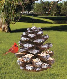 ~pinecone #birdfeeder