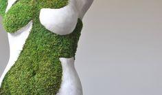 Murs végétaux stabilisés : par WallUP