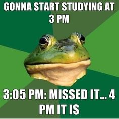 Time to study
