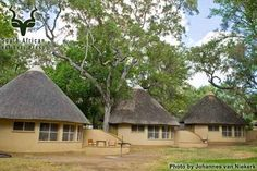 KNP - Letaba - General Thatched House, Thatched Roof, Property Design, Rental Property, Sustainable Building Design, Circle House, African House, Mud House, Beach Bungalows