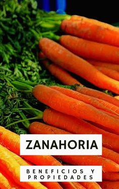 AgroA -- Beneficios y propiedades de la Zanahoria
