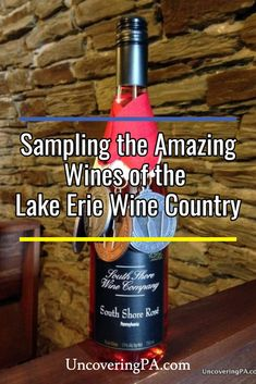 Visiting the wineries of the Lake Erie Wine Country will give you a chance to taste of the best wines in Pennsylvania. Specializing in sweet wines, the choices are endless. Crawford County, Traveling Vineyard, Great Lakes Region, Sweet Wine, Wine Wall, Lake Erie, Celebration Quotes, Beach Trip, Beach Travel