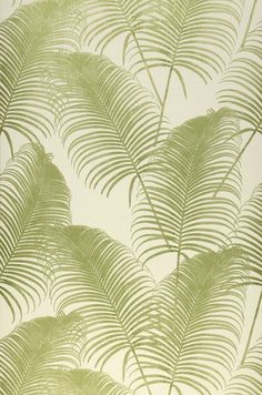 Khroma Paloma Emerald Oxygen - Meble skandynawskie i polskie, lampy, tapety - Perffecto Wallpaper Samples, Pattern Wallpaper, Surf House, Exotic Flowers, Cool Rooms, Basic Colors, House Colors, Flower Designs, Decoration