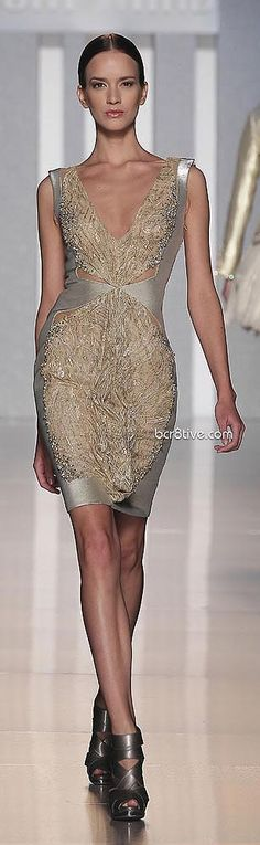Tony Ward Haute Couture 2013 - very pretty. This would be a great dress for New Year's Eve.