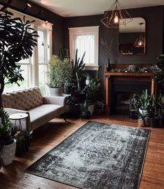 Dark walls and lots of plants. Instagram: @ maddiegreer