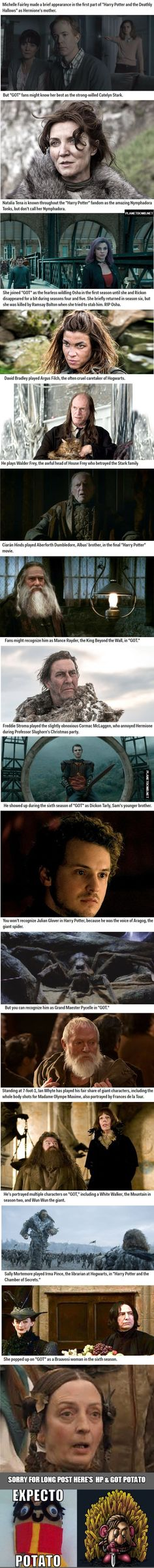 Actors who went from 'Harry Potter' to 'Game of Thrones'...