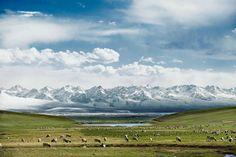 Bayanbulak, Xinjiang, China