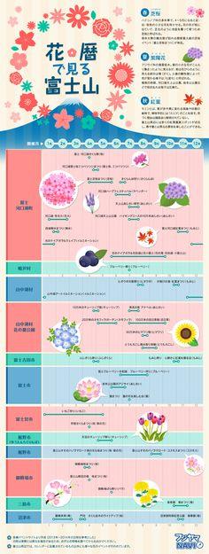 富士山のまわりには花の名所が多く、花祭り等のイベントが年間を通して実施されています。そんな富士山エリアで鑑賞できる植物や花のイベントを暦に載...