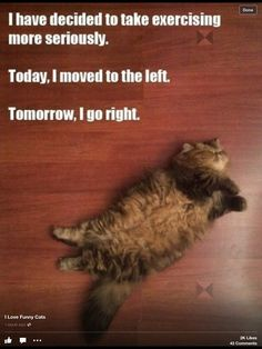 My idea of exercise