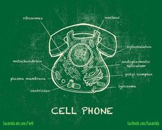 Cell Phone - spin the nuclear membrane and move the supramembrane structure (receiver) to reach out & touch someone?