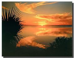 Bring your walls to life with this beautiful ocean beach sunset Laguna Madre Texas scenery nature art print poster. This versatile poster works wonderfully in a formal setting and complements casual decor as well. This amazing ocean beach poster will definitely motivates you to stay calm and fresh. You will surely love this poster as a part of your home. It is an ultimate pick to decorate your personal space.
