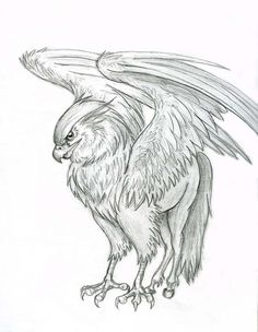 hippogriff   Hippogriff by ~Lizzy23 on deviantART