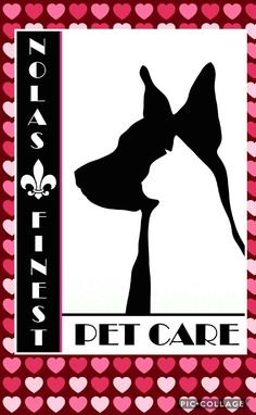 Happy Valentine's ♡♡ www.nolasfinestpets.com Pet Home, Valentines, Pets, Happy, Valentine's Day Diy, Valentines Day, Ser Feliz, Valentine's Day, Animals And Pets