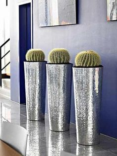 Sleek, contemporary, and the barrel cactus are perfect.