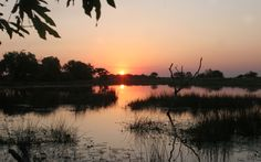 Located within the Matsebe concession in Botswana's Okavango delta, Pom Pom Camp boasts a permanent lagoon surrounded by miles of reeds. Africa Travel, Us Travel, Vintage Safari, Romantic Things To Do, Okavango Delta, Victoria Falls, Sight & Sound, Game Reserve