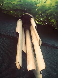 Cinnamon Sticks, Spices, Pictures, Spice