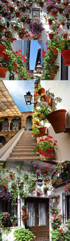 Córdoba, España <3 <3