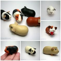 Clay guinea pigs by quernus crafts clay ideas, sculpey ideas, fimo polymer clay, Sculpey Clay, Polymer Clay Kunst, Polymer Clay Figures, Cute Polymer Clay, Polymer Clay Animals, Cute Clay, Polymer Clay Miniatures, Polymer Clay Charms, Polymer Clay Creations