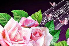 Fluturi si trandafiri