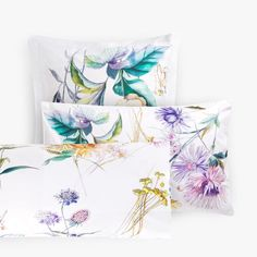 Image 1 of the product BOTANICAL PRINT PILLOWCASE Zara Home Canada, Impressions Botaniques, Bed Linen Design, Home Decor Store, Table Covers, Botanical Prints, Decoration, Linen Bedding, Duvet Covers