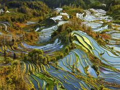 Terraces of Pastel - Captured  In Yunnan Province this image have a a very high dynamic  range of Pastel colors