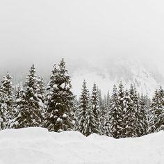// nachdem wir gestern sogar in Wien mit Schnee überrascht wurden - seid ihr Team #yayforsnow oder #cantwaitforsummer ?? Snow, Outdoor, Outdoors, Outdoor Games, The Great Outdoors, Eyes, Let It Snow