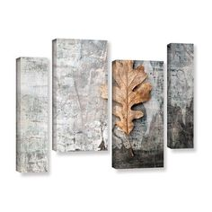 ArtWall Still Life Leaf by Elena Ray 4 Piece Photographic Print on Wrapped Canvas Staggered Set Size: