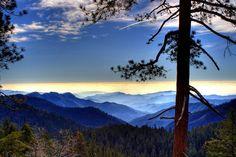 Blue Ridge and Smoky Mountains View Blue Ridge Parkway, Blue Ridge Mountains, Great Smoky Mountains, Blue Mountain, Mountain Photography, Landscape Photography, Landscape Photos, Architecture Design, Mountain Wallpaper