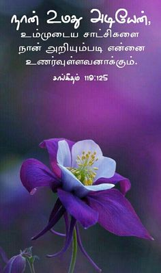 Jesus Words In Tamil, Tamil Bible Words, Bible Words Images, Tamil Christian, Christian Verses, Bible Verse Wallpaper, Bible Verses, Joy, English
