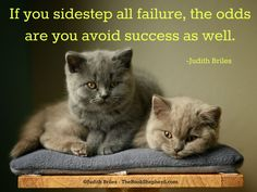 Judith Briles is a book publishing expert, self-publishing expert, indie publishing expert. She is a blunt, butt-kicking, benevolent book coach. Shepherd Book, Butt Kicks, Writer Quotes, Self Publishing, Authors, The Book, Cat Lovers, Success, Books