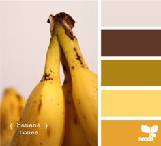 The 15 Best Design Seeds Palettes - BuzzFeed Mobile