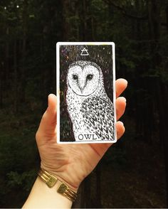 abundant, clairvoyant, treasures | the wild unknown animal spirit owl card via @corbettjulia