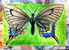 Room 9: Art!: Insect Lesson #2: Symmetrical Wings!
