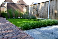 Summer Garden, Jacuzzi, Deco, Garden Projects, Modern Architecture, Outdoor Spaces, Terrace, Planters, Sidewalk