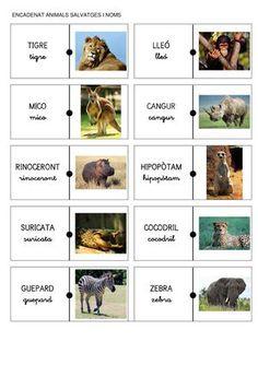 ENCADENAT ANIMALS SALVATGES I NOMS