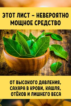 This leaf is an incredibly powerful remedy for .- This leaf is an incredibly powerful remedy for high blood pressure, blood sugar, cough, swelling and excess weight. Tips for Health and Beauty - Health And Beauty Tips, Health Tips, Fitness Diet, Health Fitness, Health Tonic, Health Motivation, Herbal Medicine, Natural Health, Herbalism