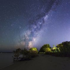 Lie on your back and watch the stars at Jacobs Well. 17 Amazing Places To Go On The Gold Coast That Aren't The Beach Brisbane Gold Coast, Gold Coast Australia, Great Places, Places To See, Beautiful Places, Amazing Places, Jacobs Well, Melbourne, Sydney