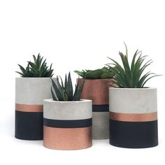 Cement Art, Concrete Crafts, Concrete Projects, Interior Design Plants, Plant Design, Flower Planters, Flower Pots, Rose Gold Kitchen, Deco Paint