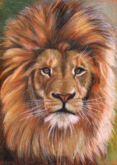 Hungarian artist: Fenykepek More - PinPhoto. Wildlife Paintings, Wildlife Art, Animal Paintings, Cool Pencil Drawings, Animal Drawings, Big Cats Art, Cat Art, Judah And The Lion, Tiger Artwork