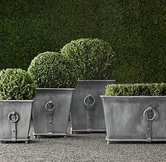 Estate Zinc Ring Square Planters | Restoration Hardware | PLANTERS on square aluminum planters, square iron planters, square stone planters, square brass planters, square outdoor planters, square tin planters, square terracotta planters, square fiberglass planters, square lead planters, square plastic planters, square white planters, square garden planters,