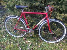 Rimonta in bici: Bicicletta tipo condorino anni 70 Welter restaurat...