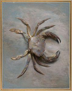 john Ruskin - study of a velvet crab, 1870