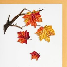 Quilling galore! A beautiful card bursting with fall colors and extensive fine quilling. Imagine the delight on your loved one's face as they receive this exquisite card! - Card is blank inside so you