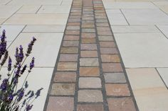 We are looking for two colors of sandstone one medium Grey and one a York green (green, not buff shades) that contrast each other, to be laid in a linear 'contemporary' pattern in bands around a large swimming pool approx Any suggestions anyone? Front Garden Path, Garden Floor, Garden Paving, Garden Paths, Sandstone Paving, Brick Paving, Paving Stones, Small Front Gardens, Back Gardens