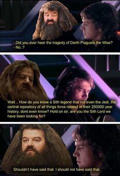 Star Wars Jokes, Star Wars Comics, Star Wars Art, Tv Funny, Funny Memes, Hilarious, Harry Potter Workout, Logic Memes, Prequel Memes
