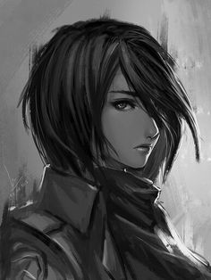 Mikasa... could easily be a charcoal or acrylic, but its digital.
