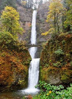 Multnomah Falls, OR. | Beautiful Nature | waterfall | wanderlust | fall leaves | oregon