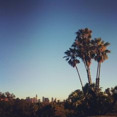i love los angeles by joy the baker, via Flickr
