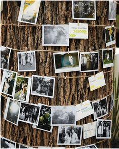 http://www.marthastewartweddings.com/231908/jennifer-and-joshua-livermore-california/@Virginia Stokes/272446/real-weddings#/125295